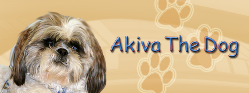 Akiva The Dog Blog